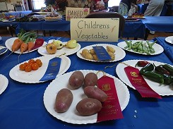 Some of the 1st and 2nd place winners in Children's Veggies (2012/2013)